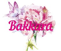 Bakkara: рассрочка от 4 мес.
