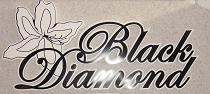 Black Diamond: рассрочка от 4 мес.