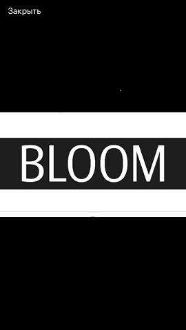 BLOOM: рассрочка от 4 мес.