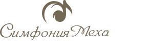 Симфония Меха: рассрочка от 6 мес.